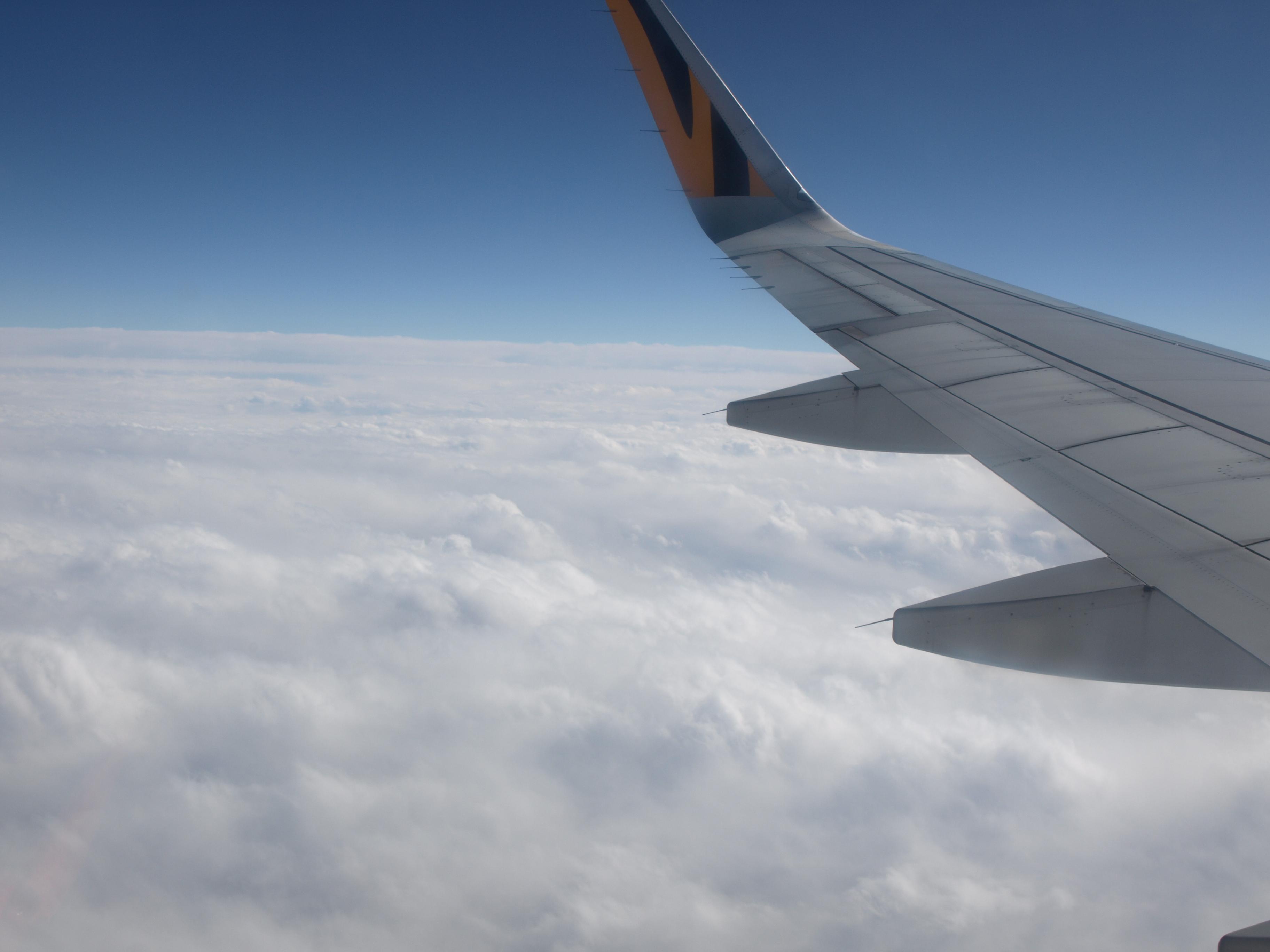 羽ばたけ大空へ